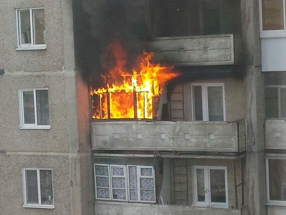 В столице России  сожгли квартиру осужденного корреспондента  РБК