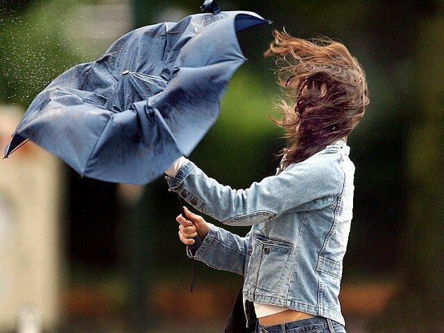 ГСЧС: вконце рабочей недели повсей Украине предполагается усиление ветра