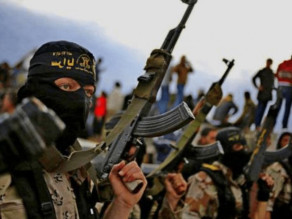 Неменее трети вооружений ИГИЛ произведено в EC